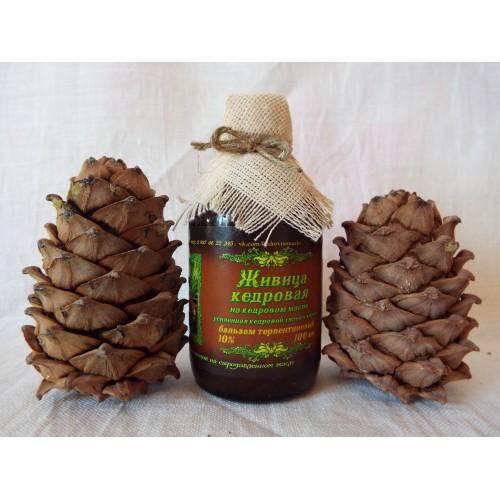 Живица кедровая: лечебные свойства и противопоказания, на масле, с прополисом, медом