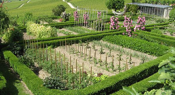Что такое садовый земельный участок – это только огород или можно строить