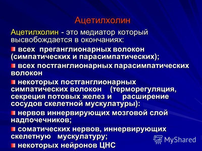 Ацетилхолин — википедия