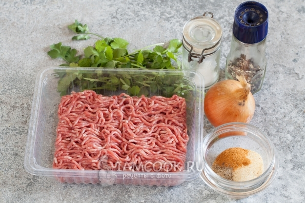 Как приготовить дома любимое блюдо кебаб: рецепты различных видов