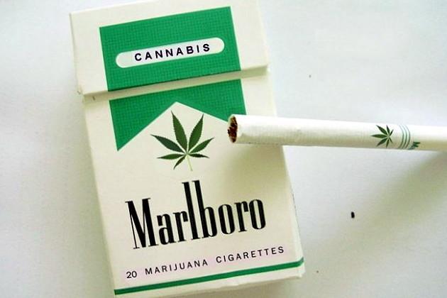 Пачка сигарет мальборо