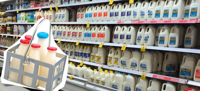 Молочные продукты - список, название, описание, классификация
