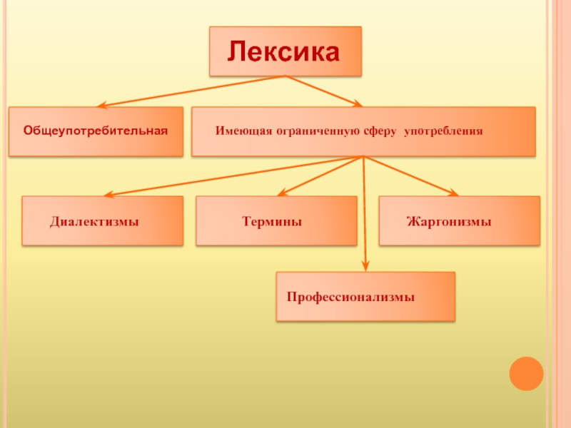Примеры общеупотребительных слов в русском языке, особенности и правила