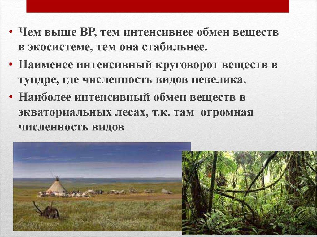 § 69. сообщества. экосистемы