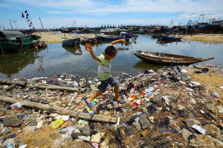 Реферат: экологический кризис 4