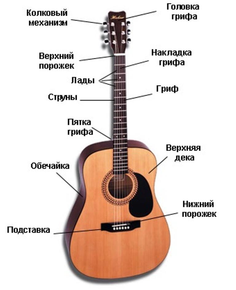 История гитары. факты и особенности возникновения