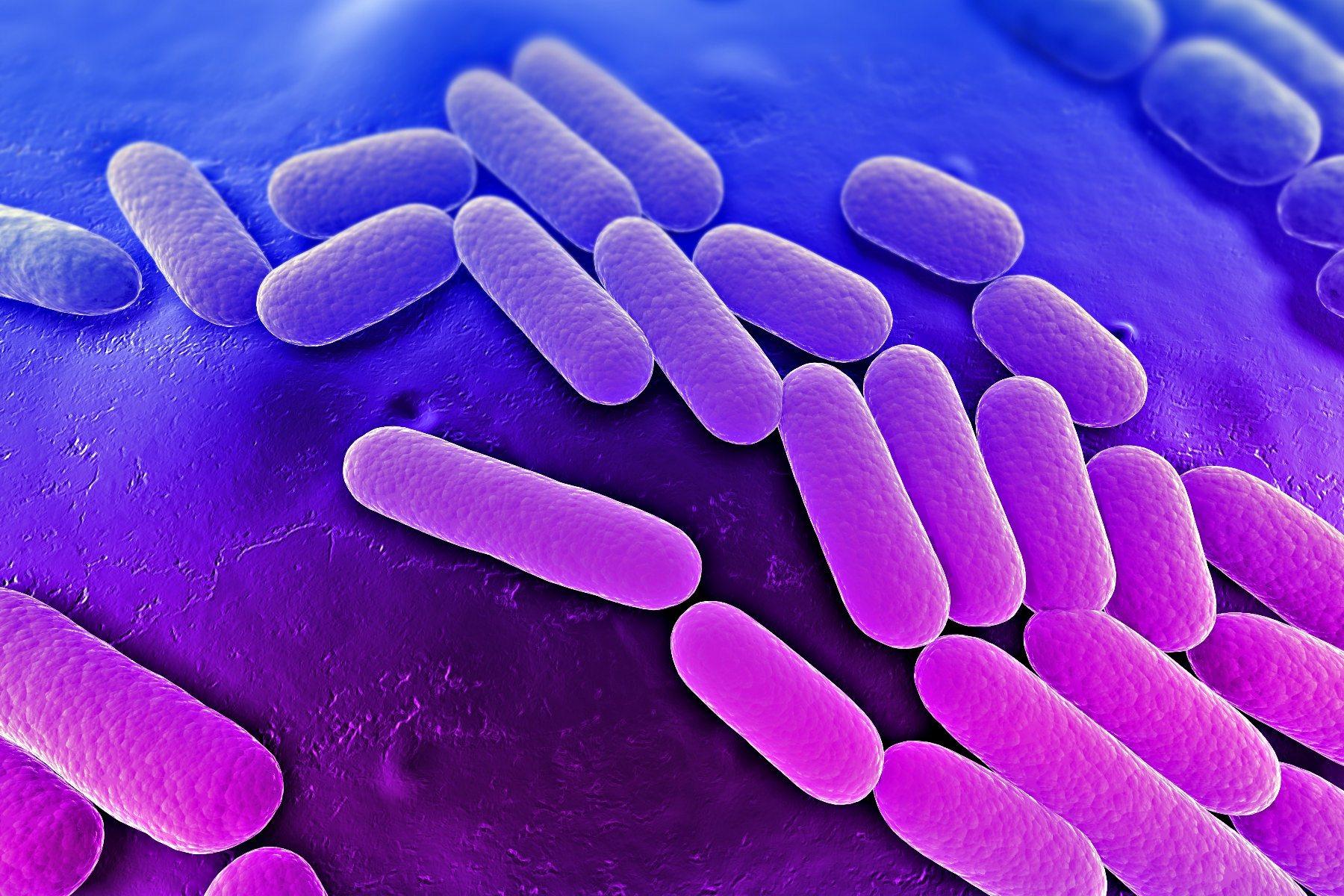Выявление клебсиеллы пневмонии в анализе мочи: возможная опасность, лечение инфекции