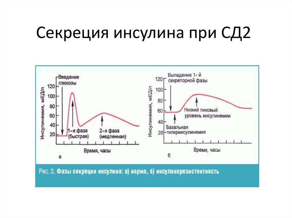 Инсулин: что это, норма, причины изменения уровня