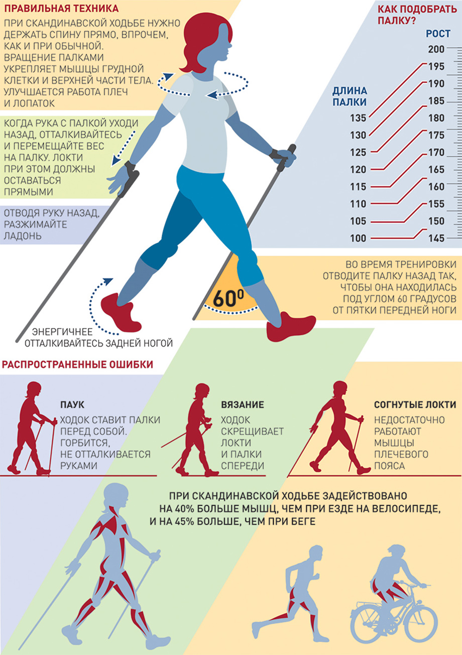 Чем спортивная ходьба отличается от бега?