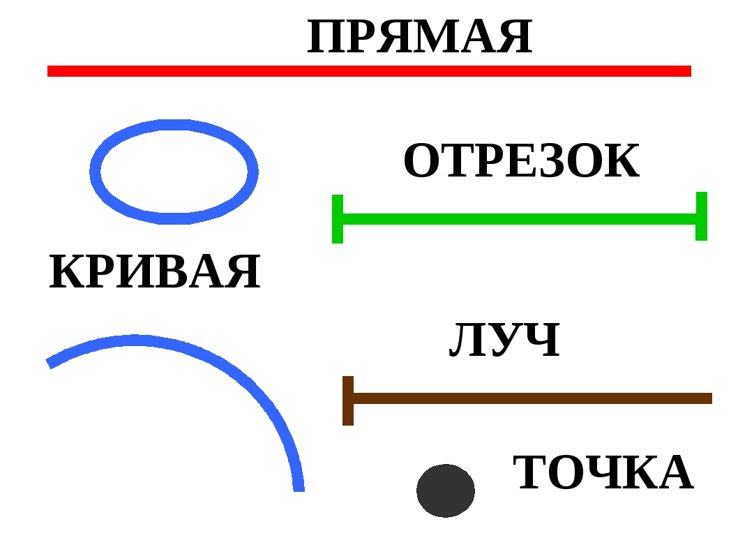 Прямая — википедия. что такое прямая