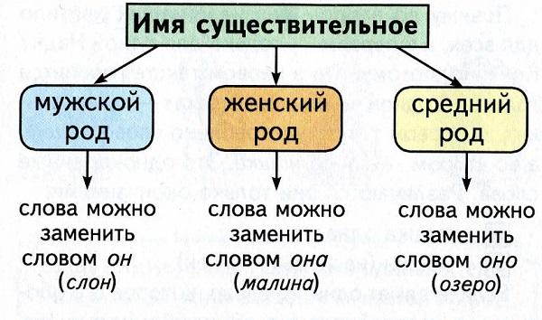 Женский род существительных в русском языке