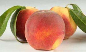 Персик (фрукт)