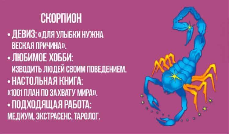 Скорпионы — википедия. что такое скорпионы