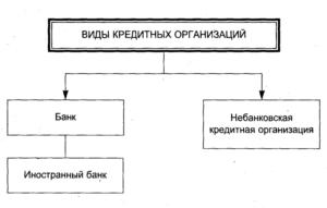 Небанковская кредитная организация: виды, основные понятия