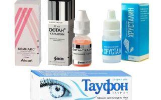 Таурин — что это за аминокислота. польза и вред таурина в каплях, таблетках или бадах | информационный портал о здоровье