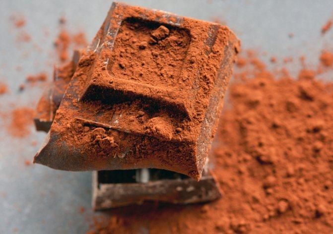 Какао и его полезные свойства