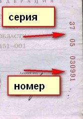 Как выглядит номер паспорта. как узнать серию и номер паспорта рф, а также другие паспортные данные - ваши накопления