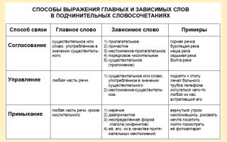 Особенности согласования в русском языке.