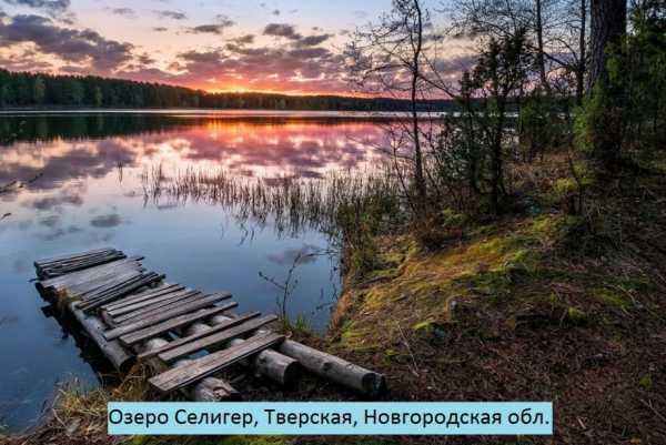 9 интересных фактов об озере селигер