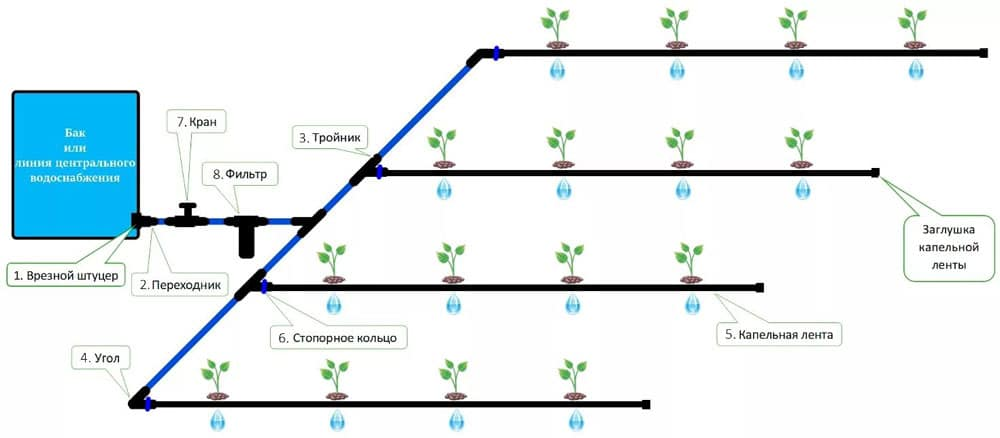 [инструкция] как организовать капельный полив