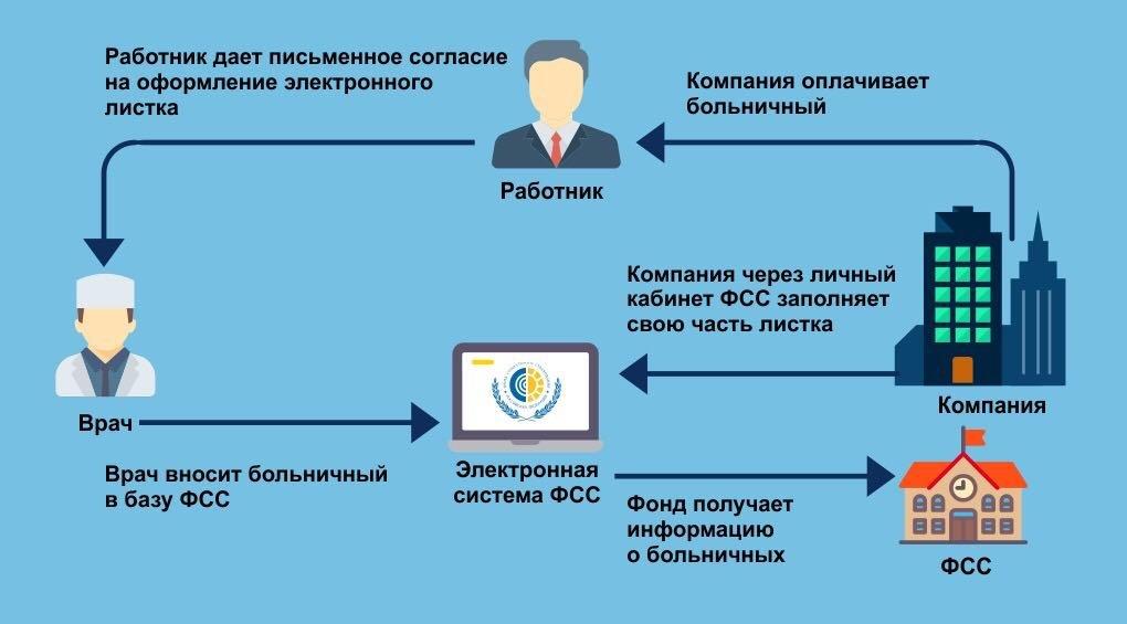 Где  и как можно посмотреть электронный больничный лист: пошаговая инструкция