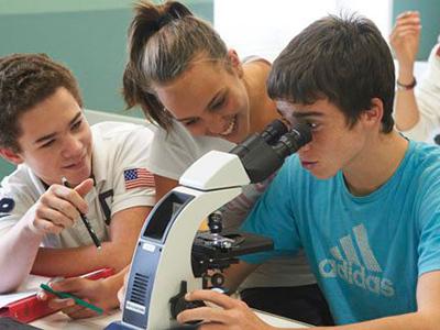 Среднее образование — википедия. что такое среднее образование