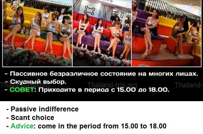 Взгляд изнутри: как устроена работа эротического массажного салона | brodude.ru