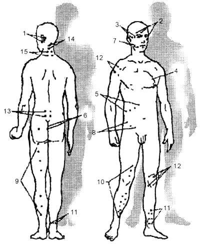 Апитерапия — википедия с видео // wiki 2