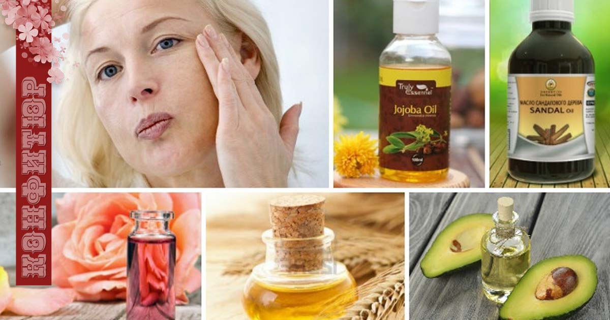 Масло жожоба для волос: полезные свойства, рецепты масок