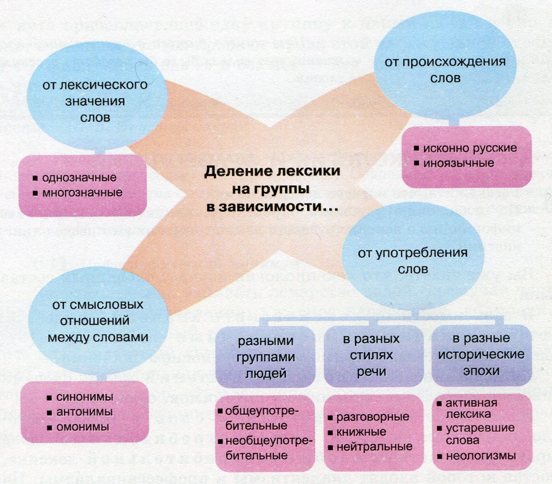 Лексикология – что изучает, примеры, разделы (5 класс,русский язык)