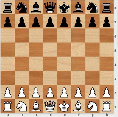 Словарь шахматных терминов (259 терминов)