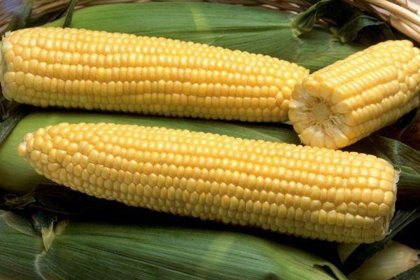 Особенности  карты «кукуруза» от евросети
