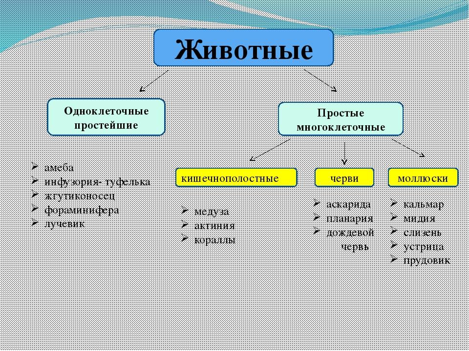 3.3. гидросфера