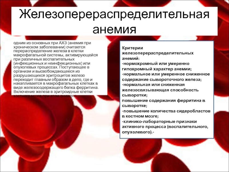 Анализ крови на железо — как контролировать уровень, диагностирование причин, почему это важно / блог компании lifext / хабр