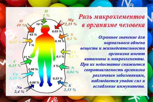 Как питание влияет на здоровье? нутрициология.