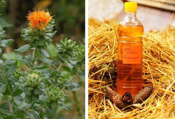 Сафлоровое масло: полезные свойства и противопоказания, техники применения