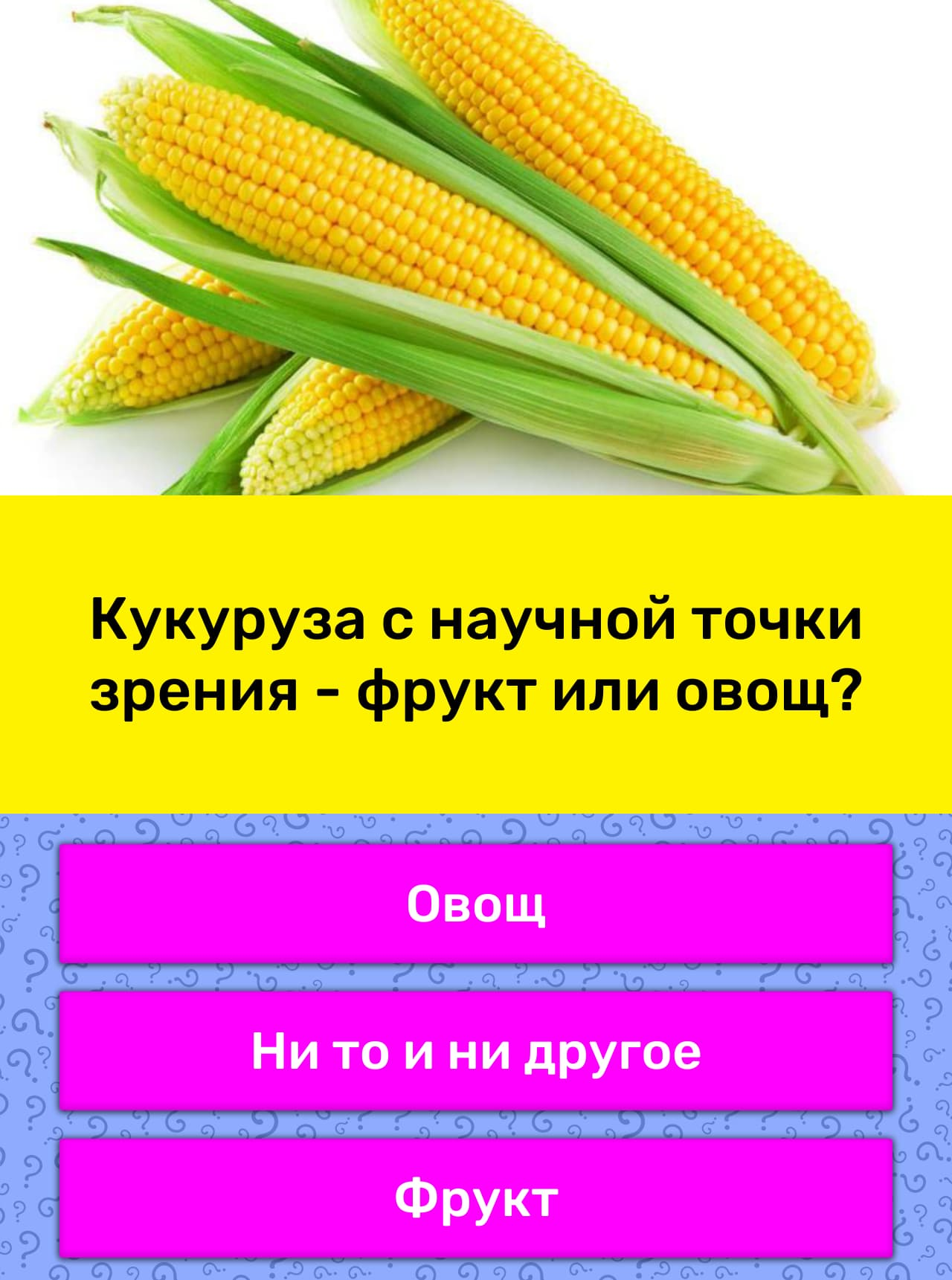 Вход в платежный и личный кабинет карты кукуруза от евросети