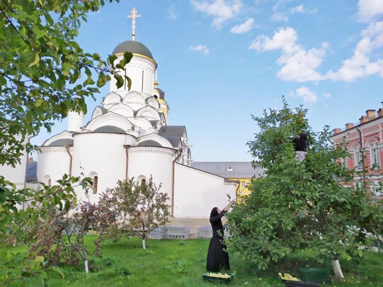 Кто такие монахи: люди на тяжёлом пути к богу