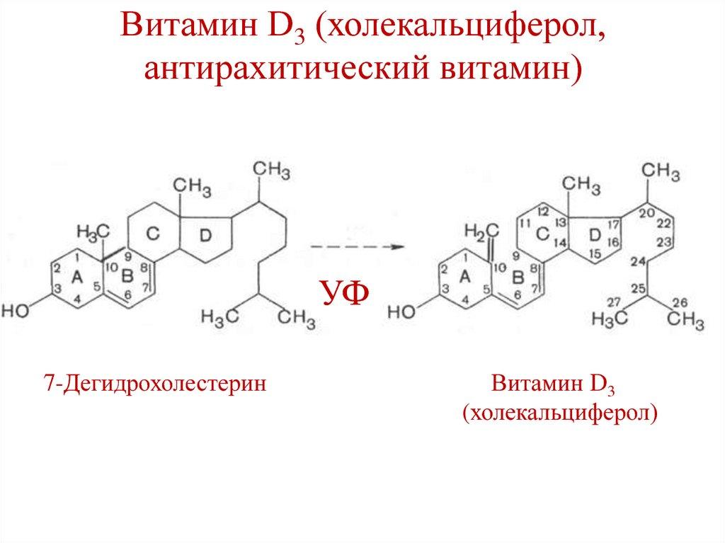 Витамин д: в каких продуктах питания содержится кальциферол
