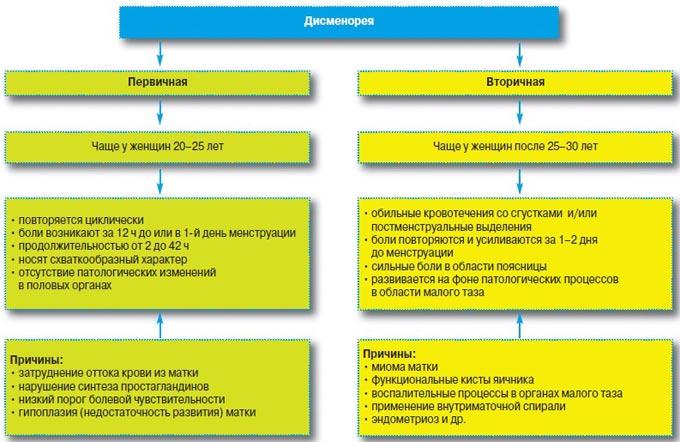 Альгодисменорея: что это такое, симптомы, причины, лечение и профилактика + отзывы (альгоменорея, дисменорея)
