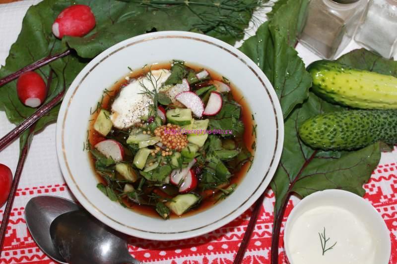 Суп ботвинья – классический рецепт и 5 новых способов приготовления