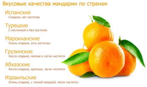 Mandarin  (мандарин)