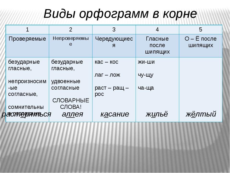 Что такое орфограмма?