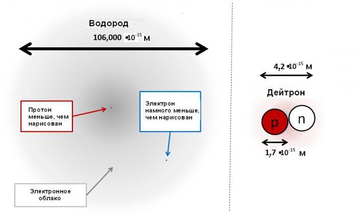 Ядерные силы – характеристики кратко
