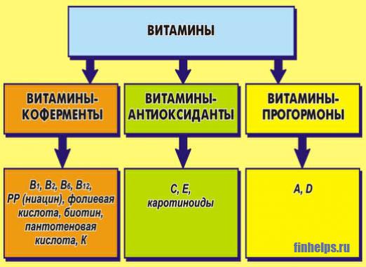 Классификация — википедия. что такое классификация