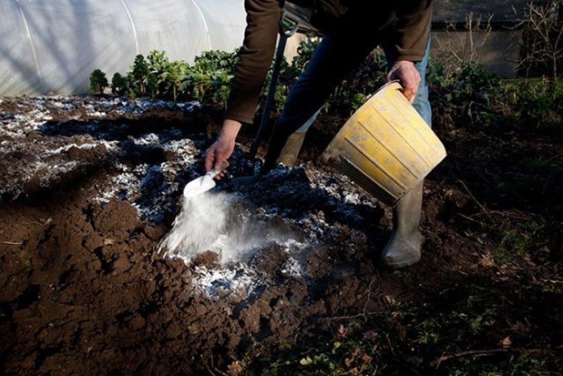 Гашеная известь: белая пушонка что это такое, состав и применение, для чего нужна гидратная и как приготовить, кальциевая свежегашеная