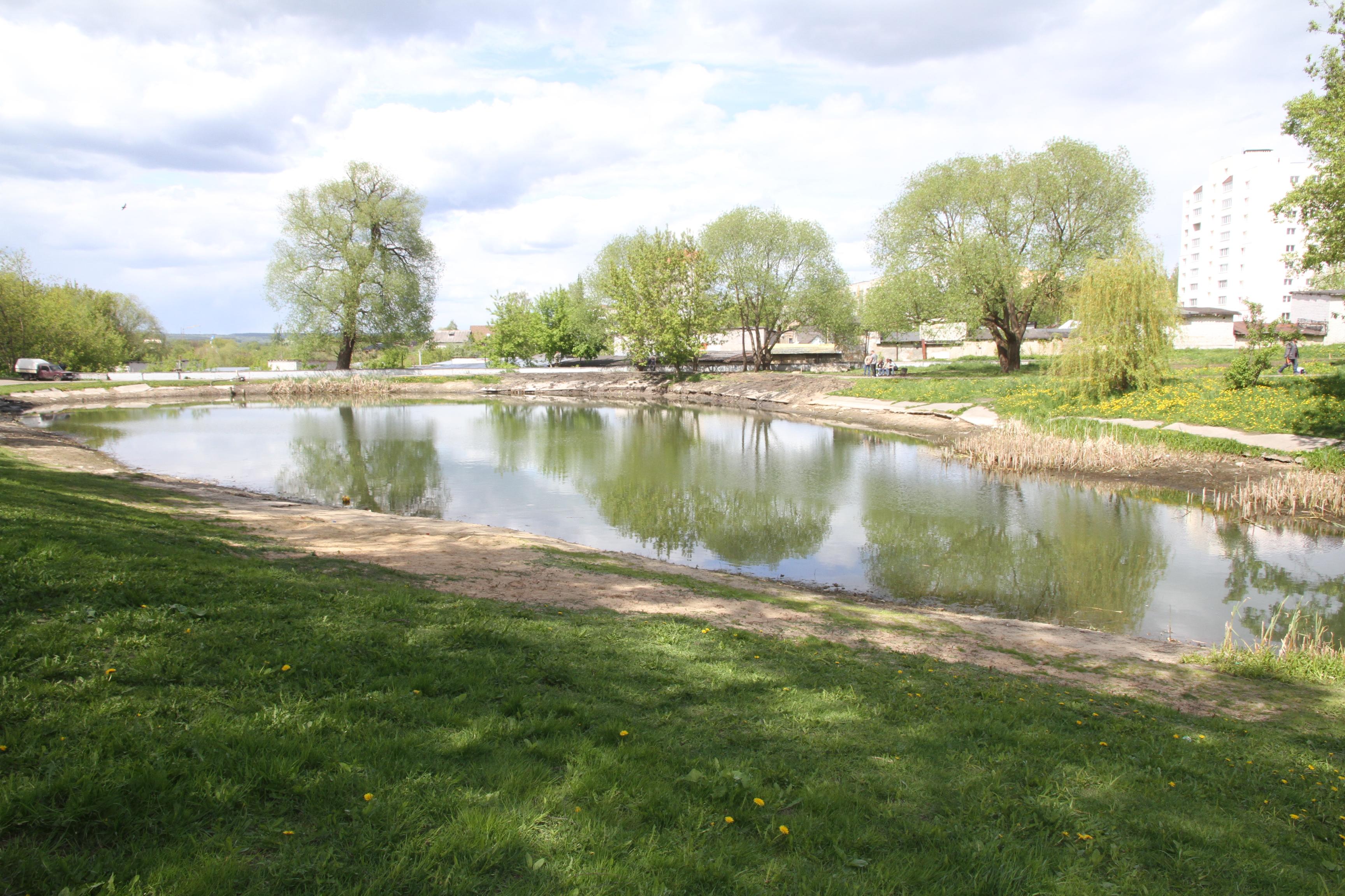 Дно пруда, реки, водоема | очистка прудов, рек, водоемов