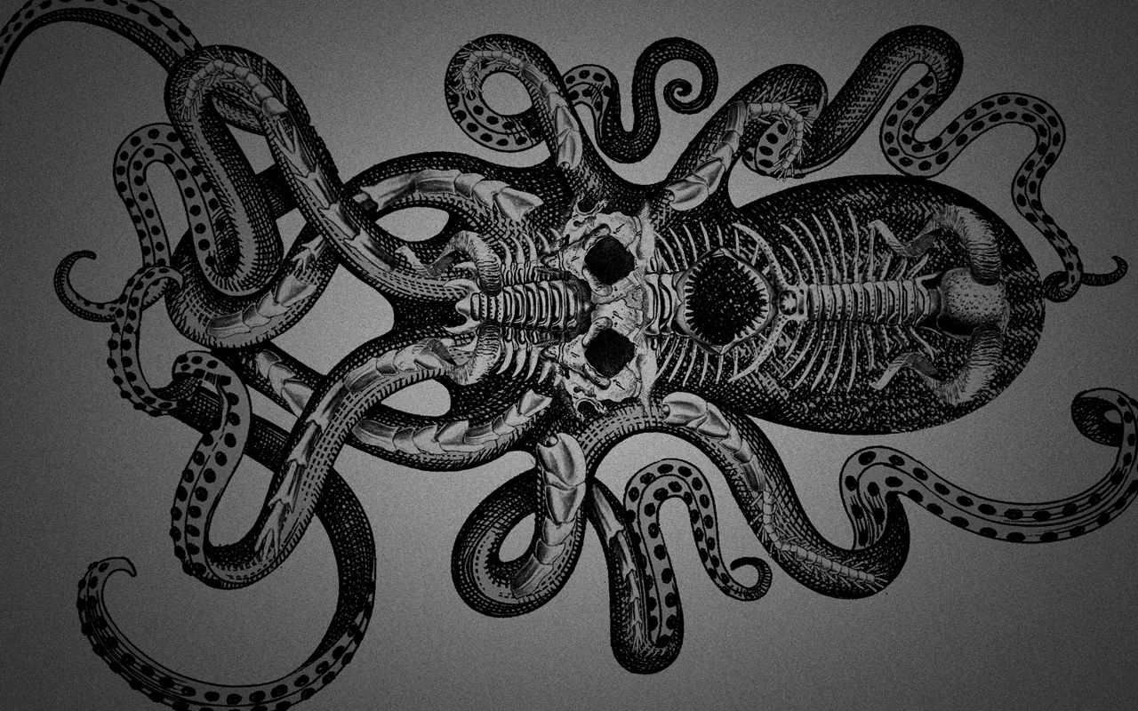 Кракен - kraken