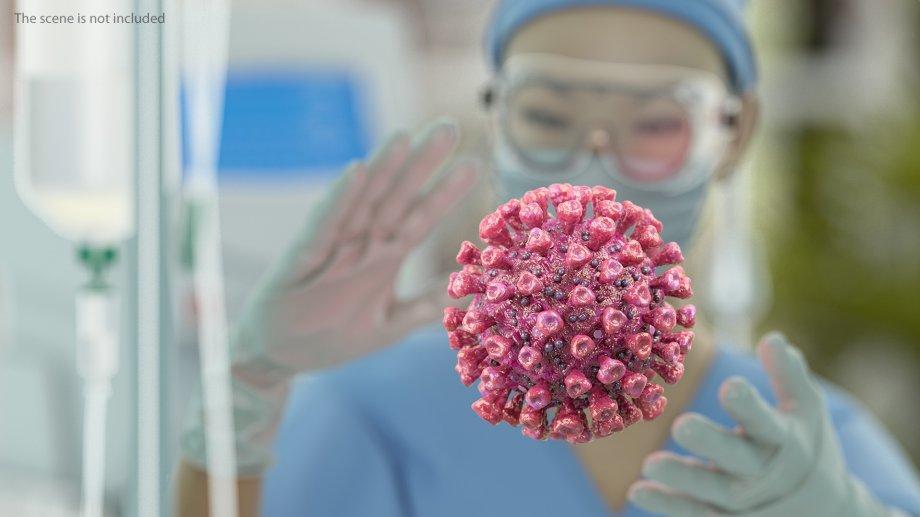 Коронавирус sars-cov-2 и новая коронавирусная инфекция: характеристика, признаки и течение, диагностика, лечение, профилактика