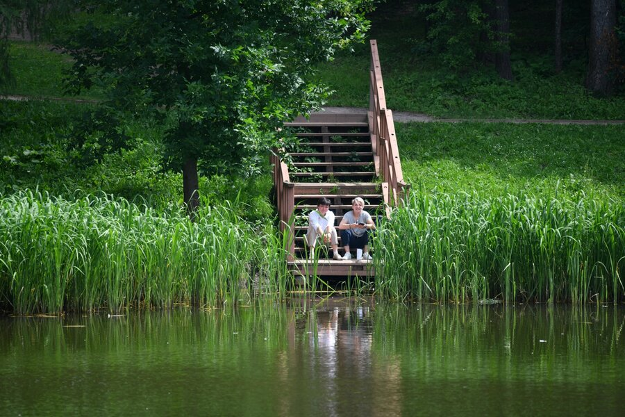 Чем пруд отличается от озера: особенности и отличия